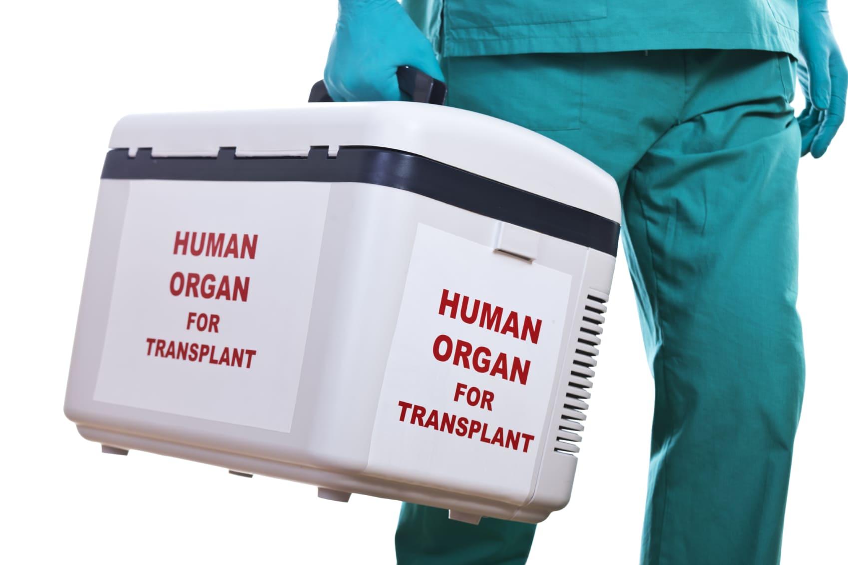 Перевозка (транспортировка) человеческих органов